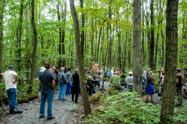 23 Acres Added and Over 300 Species Discovered at Welsh Mountain!