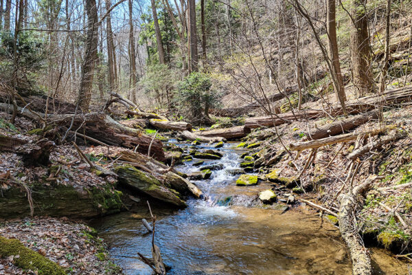 Lancaster Conservancy Protects 270 Acres in Susquehanna Riverlands