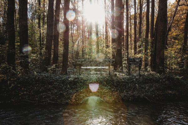 Stewardship at Work: Restoration in the River Hills